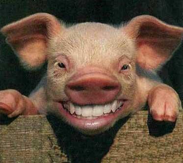 Más que sonriendo, riendo...